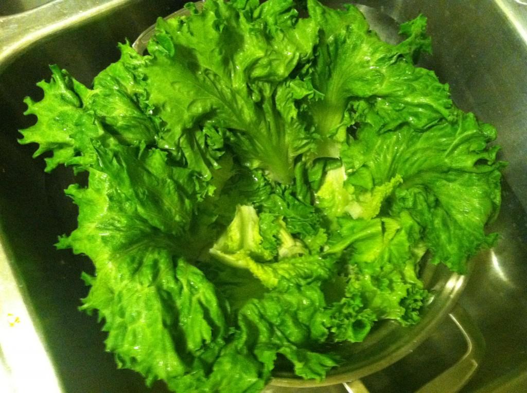 salad drying