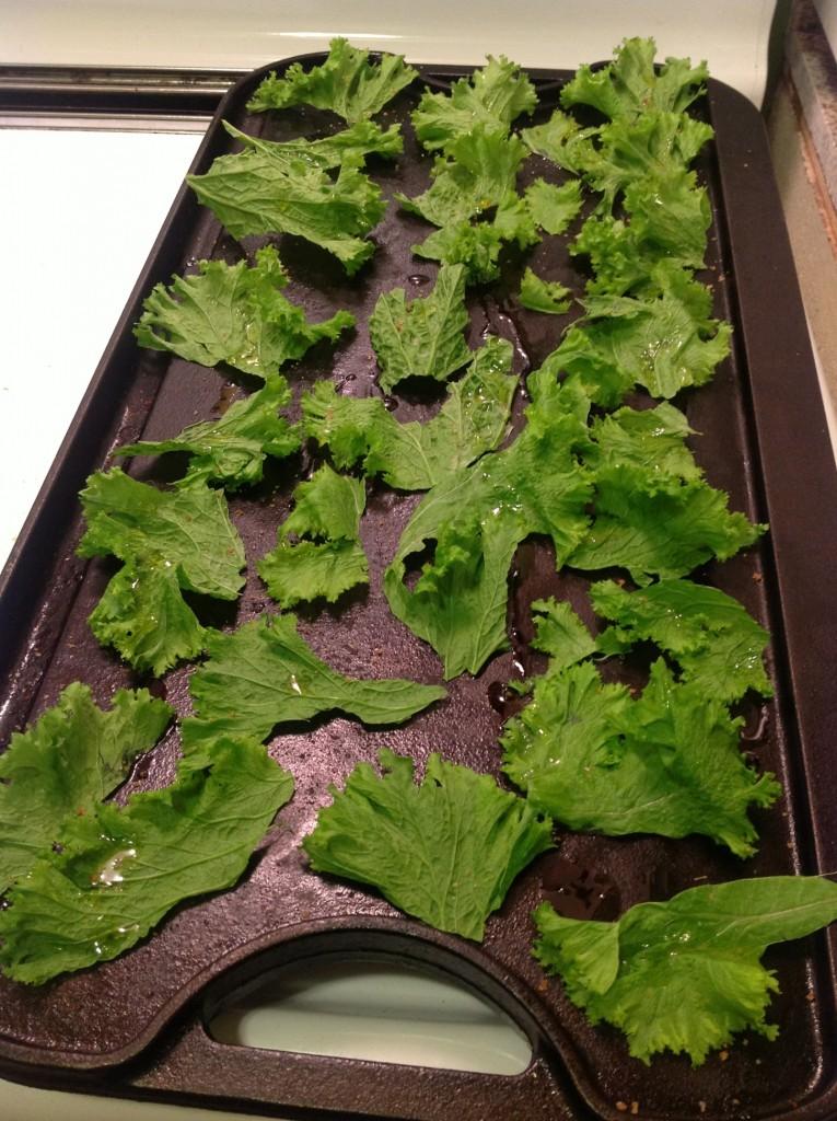 Kale Chips Pre-Baking